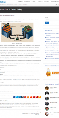 webview2